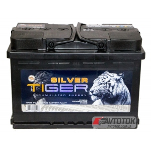Tiger Silver 60 Аh/12V Euro (0)